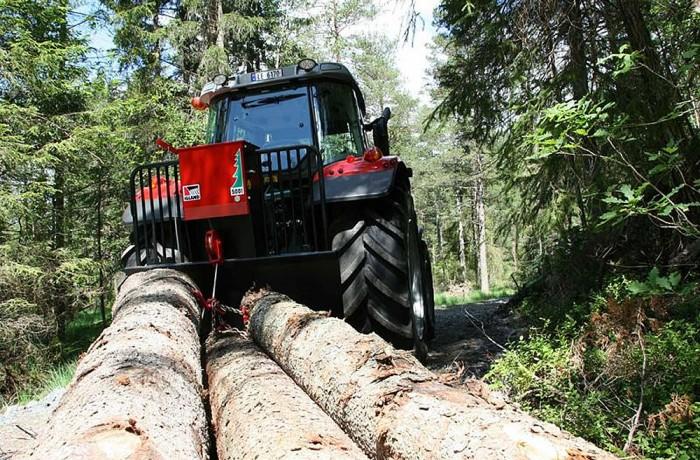 Igland Forestry