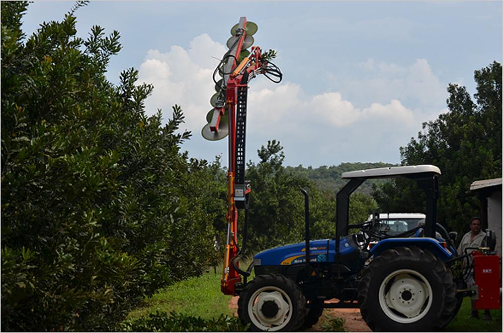BMV Pruning