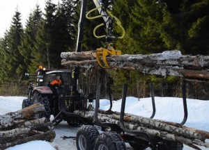 Igland Loaders - Forestry